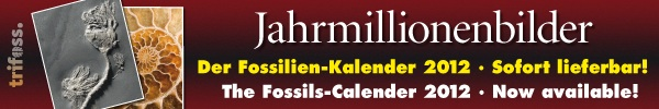 Fossilienkalender 2012