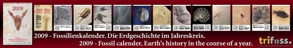 Fossilienkalender 2009