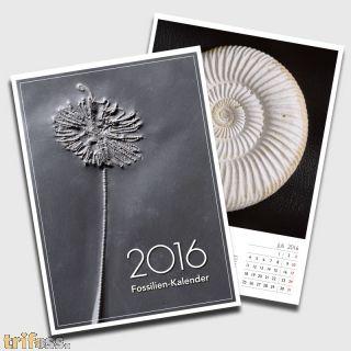 The Fossils-Calendar 2016