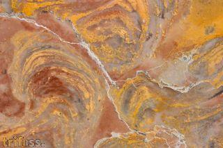 Stromatolith Inzeria tjomusi (Krylov et al.,1963)