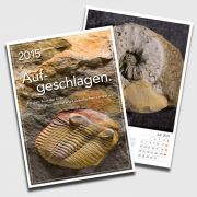 Fossil calender 2015 - Split open