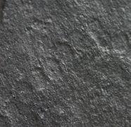 Horodyskia williamsii Grey et al, 2010