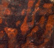 Collenia undosa Walcott 1916 & Gunflintia grandis Barghoorn, 1965 ,  Eoshaera tyleri Barghoorn, 1965
